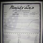Phoenix Gold Titanium 500.4