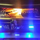 Arc Audio Signature Edition
